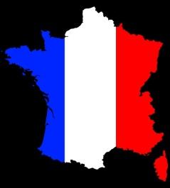 11760_large_20100901232455_574292_drapeau_francais2